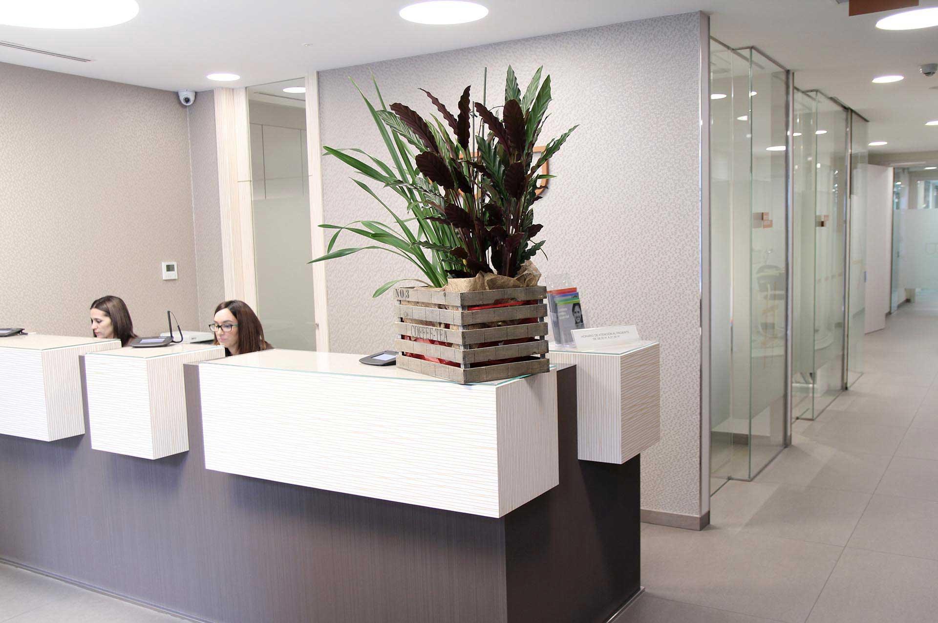 recepcion clinica blanco ramos
